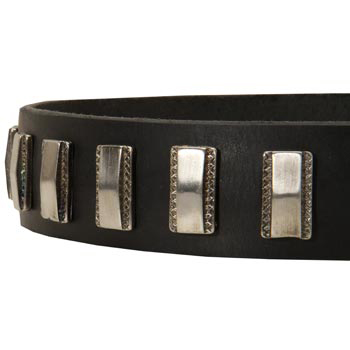 Stylish Leather Collar with Vintage Plates for American Bulldog