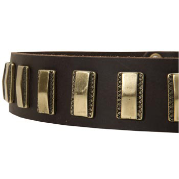 Leather Dog Collar with Adornment for American Bulldog