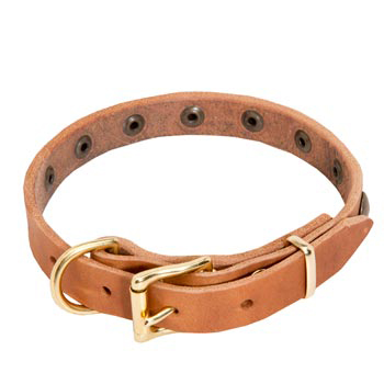 American Bulldog Leather Collar with Studs