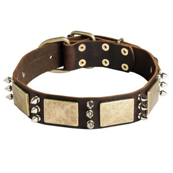 War-Style Leather Dog Collar for American Bulldog