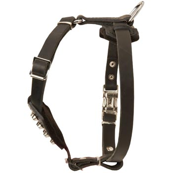 Leather American Bulldog Puppy Harness for Comfy Walking