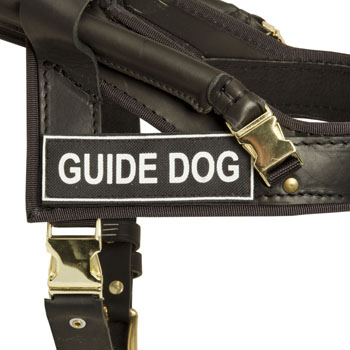 American Bulldog Leather Guid Harness with ID Patches