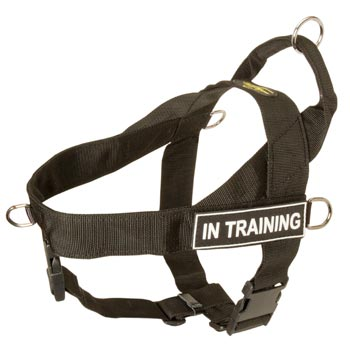 American Bulldog Nylon Harness with ID Patches