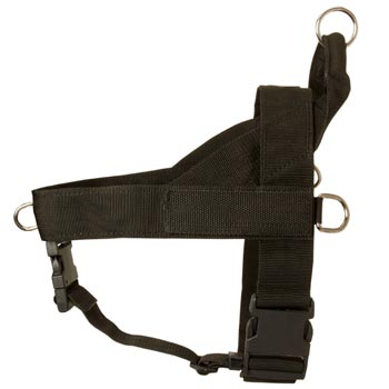 American Bulldog Harness Nylon for Comfy Walking