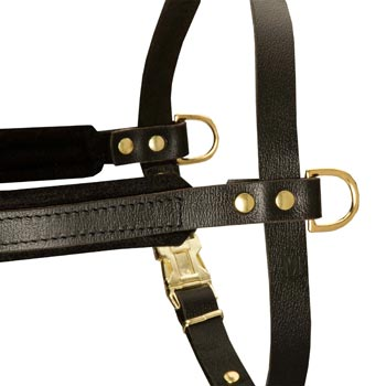 Training Pulling American Bulldog Harness with Sewn-In Side D-Rings