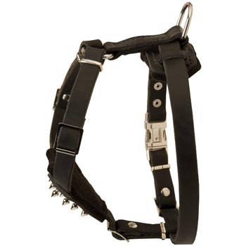 American Bulldog Leather Harness for Puppy Walking and Training