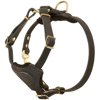 Light Weight Leather Puppy Harness for American Bulldog