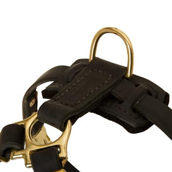 D-ring on Leather American Bulldog Harness for Puppy Training