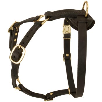 Tracking Leather Dog Harness for American Bulldog