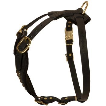 Easy Adjustable Leather American Bulldog Harness