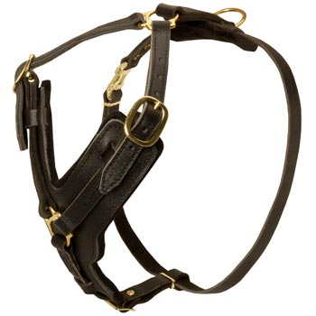 Comfortable Y-Shaped Leather Harness for American Bulldog Attack  Training