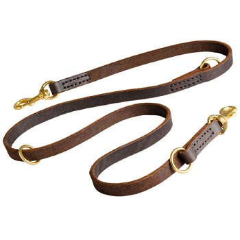 Leather Leash for American Bulldog Everyday Walking