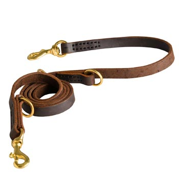 Strong Leather Leash for American Bulldog Successful Training