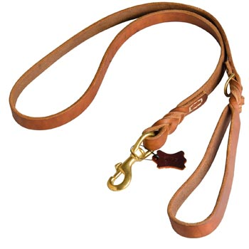 Canine Leather Leash for American Bulldog