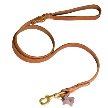 Training Leather American Bulldog Leash with Handle