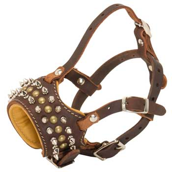 American Bulldog Muzzle Leather Browne with Spikes and Studs