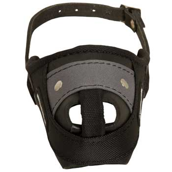Nylon and Leather American Bulldog Muzzle with Steel Bar for Protection Training