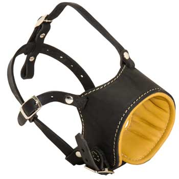 Adjustable American Bulldog Muzzle Padded with Soft Nappa Leather for Anti-Barking Training